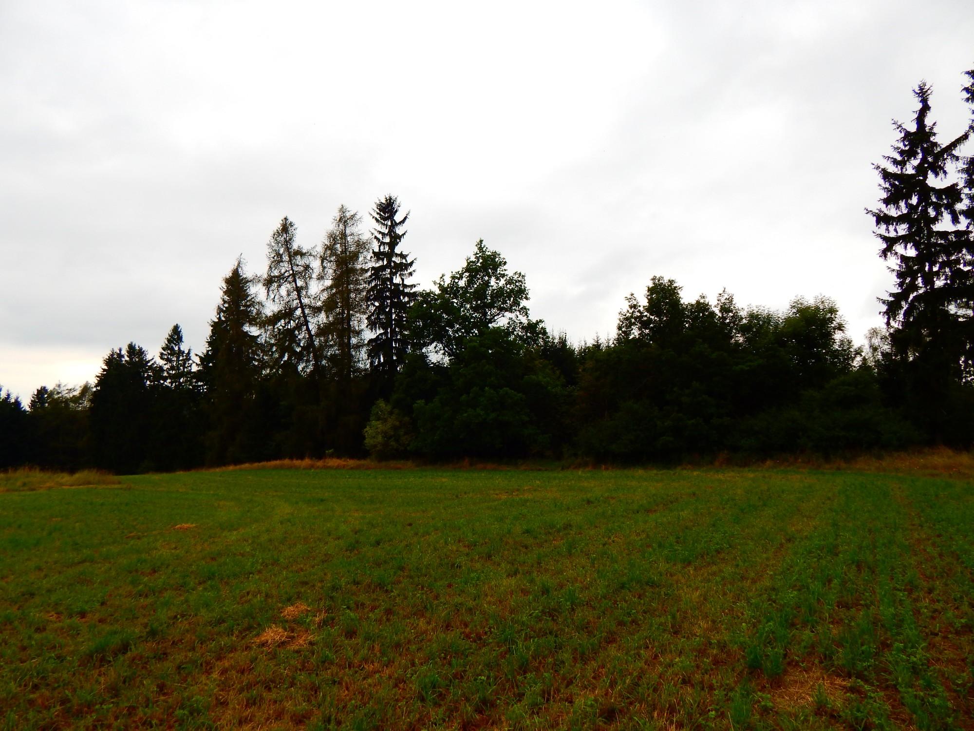 Koupaliště v Kostelní Myslové uprostřed lesů