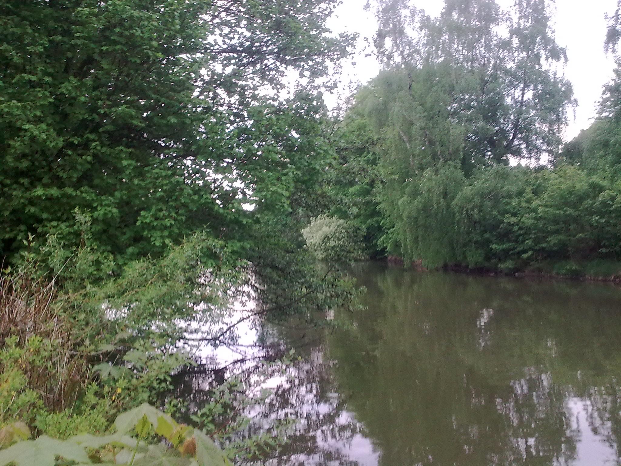 Štěpnický rybník